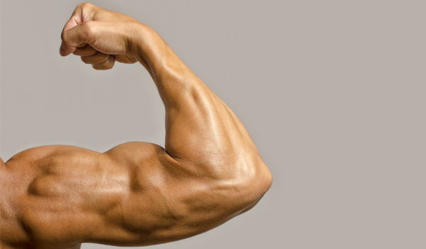 testosteron wznosi się z erekcji jeśli penis